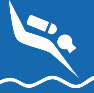 Diving Series Category